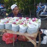 Penjual Bunga Untuk Ziarah